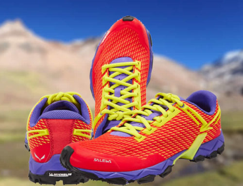 Review Salewa Lite Train