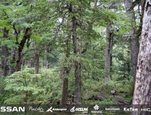 Cañi trail: Visión que transforma